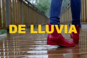 IMAGEN DE BOTAS DE LLUVIA